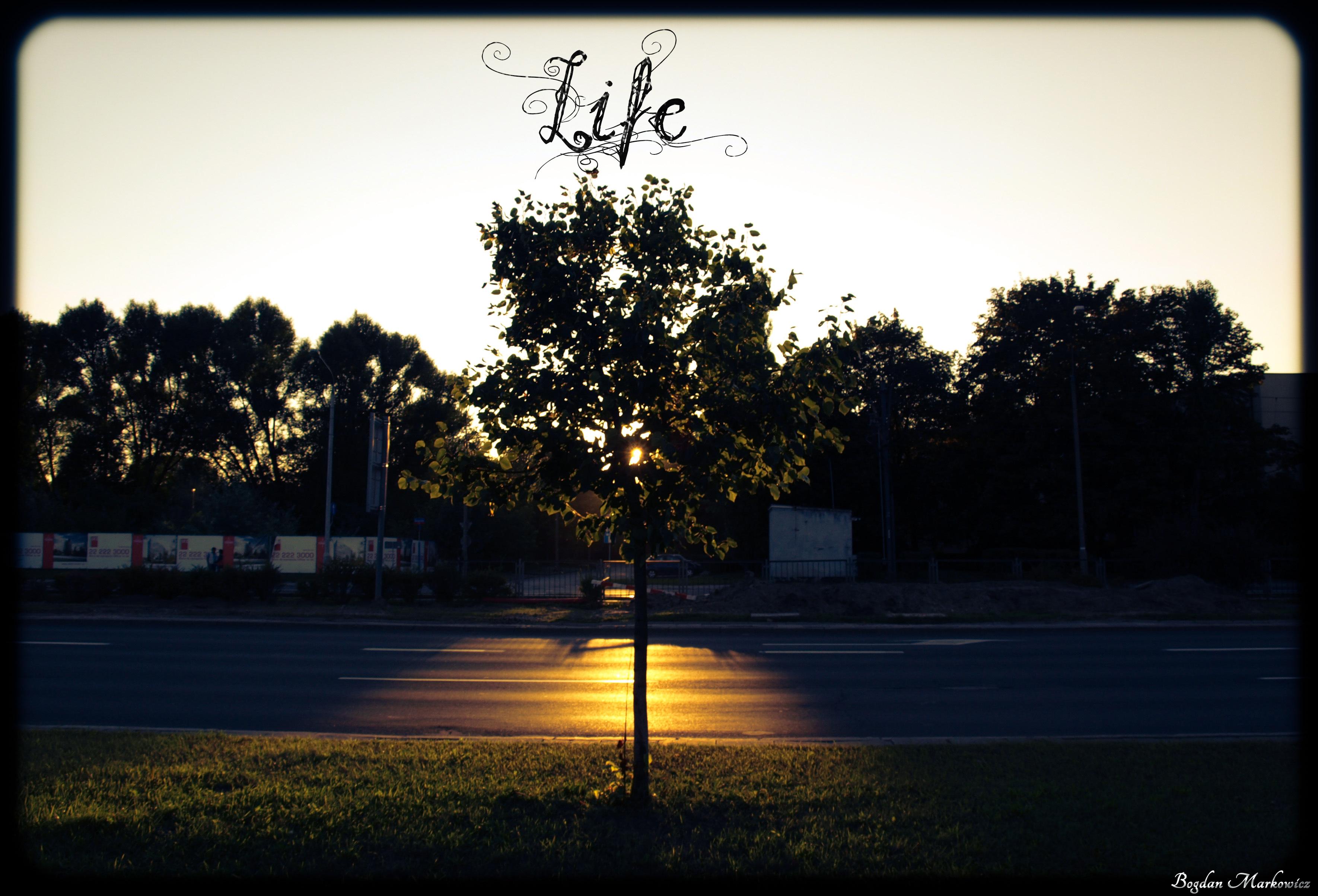 Życiowy e-motion