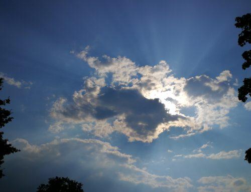 Dziś dzień zadumy i refleksji, oraz odzyskiwania spokoju duszy.